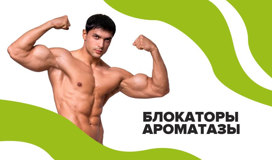 Блокаторы Ароматазы